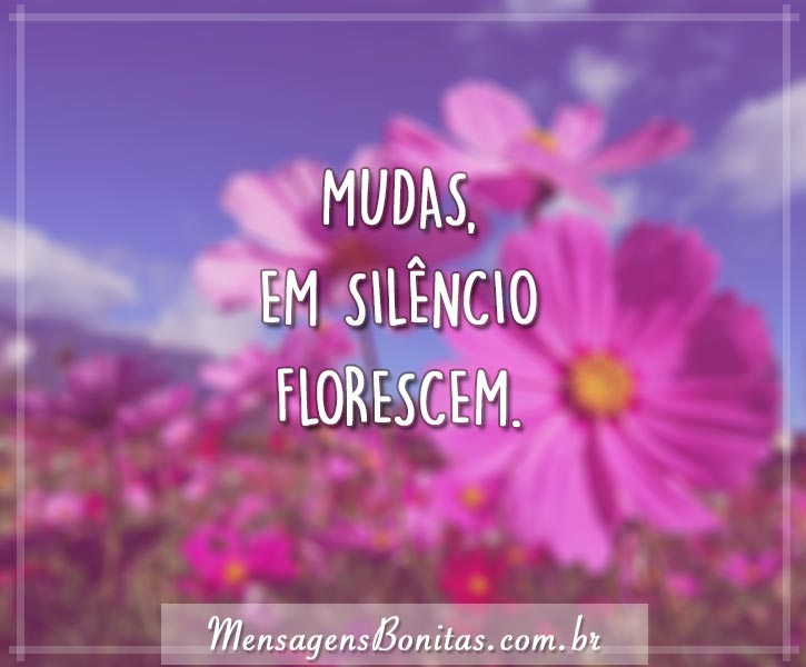 Mudas, em silêncio